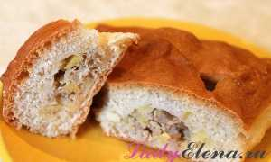 Картофельный пирог с мясом – рецепт пошаговый с фото
