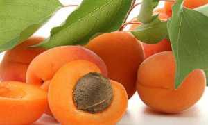 Компот с сушеными грушами, клубникой и абрикосами – рецепт пошаговый с фото