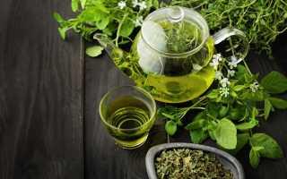 Зелёный чай с мелиссой – рецепт пошаговый с фото