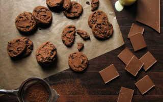 Печенье с какао – рецепт пошаговый с фото