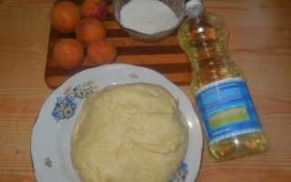 Пирожки с абрикосами жареные на сковороде – рецепт пошаговый с фото