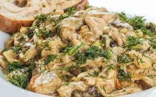 Как приготовить грибы в сметанном соусе