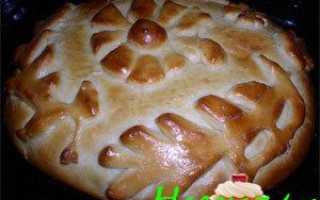 Кулебяка с луком и квашеной капустой – рецепт пошаговый с фото