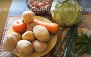 Щи со свежей капустой на говяжьей косточке – рецепт пошаговый с фото
