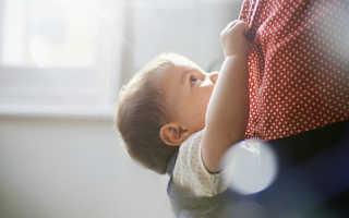 Как правильно отучить ребёнка от рук – полезные советы и лайфхаки
