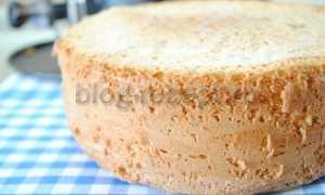 Пышный классический бисквит – рецепт пошаговый с фото