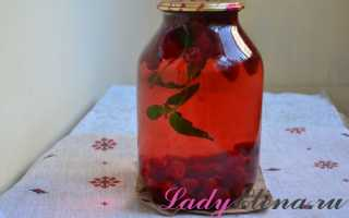 Компот из малины с мятой на зиму в 3-х литровых банках – рецепт пошаговый с фото