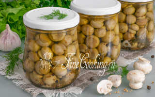 Быстрые маринованные шампиньоны – рецепт пошаговый с фото
