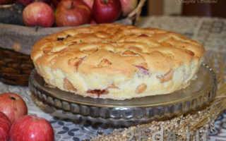 Шарлотка с яблоками и сливой в духовке – рецепт пошаговый с фото