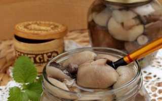 Маринованные маслята с гвоздикой – рецепт пошаговый с фото