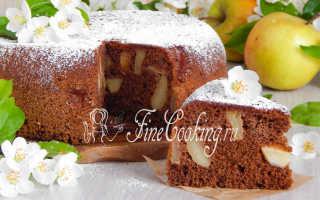 Шоколадная шарлотка с яблоками – рецепт пошаговый с фото