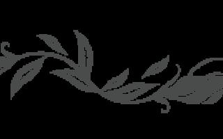 Молочная овсяная каша сваренная с изюмом – рецепт пошаговый с фото