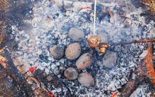 Как правильно запечь рыбу в духовке – полезные советы и лайфхаки