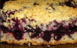 Домашний пирог на сметане с красной смородиной и яблоками – рецепт пошаговый с фото