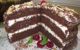 Шоколадный торт на кефере – рецепт пошаговый с фото