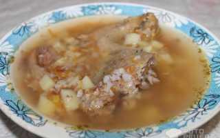 Суп на индоутиных окорочках с ячкой – рецепт пошаговый с фото