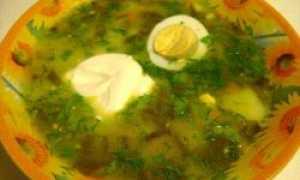 Зеленый борщ с кефиром – рецепт пошаговый с фото