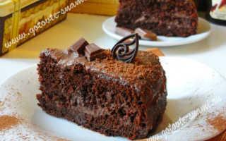 Шоколадный торт с нежным кремом – рецепт пошаговый с фото