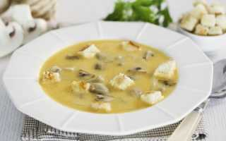 Суп с грибами и помидорами в мультиварке – рецепт пошаговый с фото