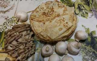 Блины с грибной начинкой – рецепт пошаговый с фото