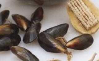 Тальятелле с мидиями – рецепт пошаговый с фото