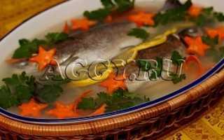 Заливное из форели – рецепт пошаговый с фото